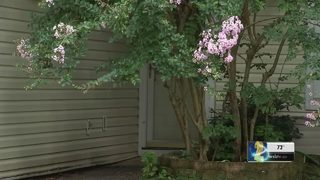 Police say man kidnapped mother and daughter from Kennesaw home