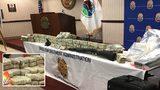 Major drug bust in Gwinnett County