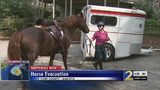 Horse owners use special app to help figure out where to house pets during Hurricane Florence