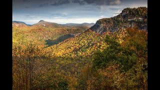 11 of the best places for foliage in and around Georgia