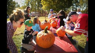 The ultimate guide to metro Atlanta pumpkin patches
