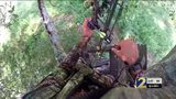 Hunters beware: DNR, fellow hunters warn of tree stand dangers this season
