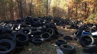 This is possibly the largest illegal tire dump in Georgia history