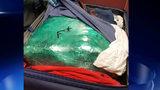 Marijuana seized at Atlanta's airport