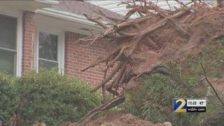 Falling tree narrowly misses DeKalb County home