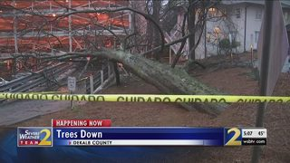 Tree falls onto multiple cars as metro endures another round of rain