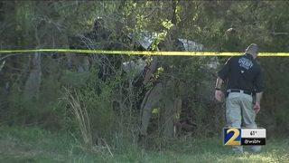 Plane crashes near homes in northwest Georgia, killing pilot