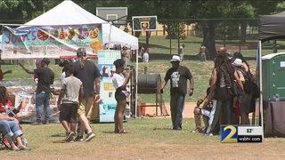 Caribbean carnival shut down over permit violation