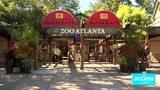 Access Travel Freebie-Zoo Atlanta