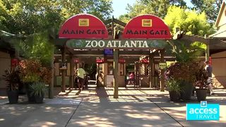 How a trip to the library can score free admission to Zoo Atlanta