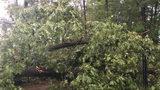Metro Atlanta still at risk for strong storms
