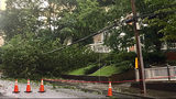 Trees down, power outages across metro Atlanta after heavy rain