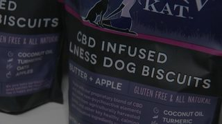 CBD becoming way to calm pets -- but vets aren