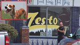 The couple had stopped at the Zesto on Piedmont Road to get some ice cream when they noticed someone breaking into their car.
