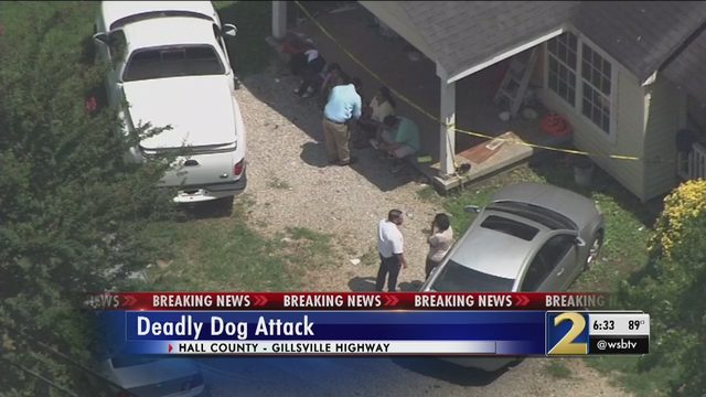 Baby attacked, killed by family dog, sheriff says | WSB-TV