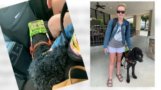Woman says ride-share drivers repeatedly canceled trips over service dog