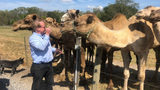 Severe drought impacting Georgia exotic animal farm, officials say