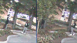 Suspects in robbery on UGA campus