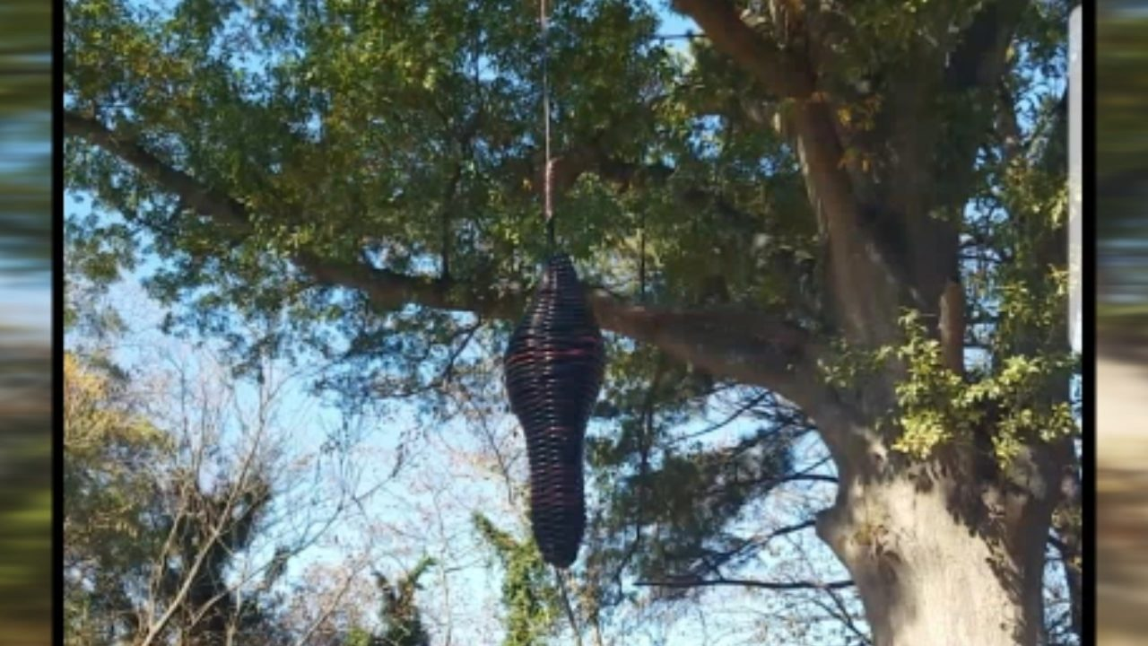 Neighbors shocked, disturbed by hanging artwork along Atlanta Beltline