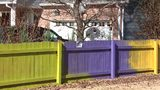 A dispute over a woman's fence being too high has now turned into a commotion over color.